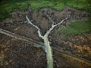 Oil Bunkering #2, Niger Delta by Edward Burtynsky contemporary artwork