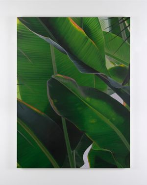 Banana VI by Marcel Vidal contemporary artwork painting