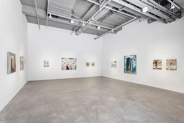 Exhibition view: Han Jiaquan, Ornaments, Arario Gallery, Shanghai (26 May–29 July 2018). Courtesy Arario Gallery.