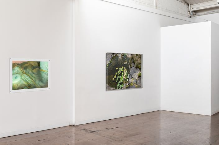 Exhibition view: Honey Long & Prue Stent, Touching Pool, Arc One Gallery, Melbourne (online only) (21 August–16 October 2020). Courtesy Arc One Gallery.