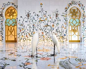 Morning Glory, Grand Mosque, Abu Dhabi by Karen Knorr contemporary artwork