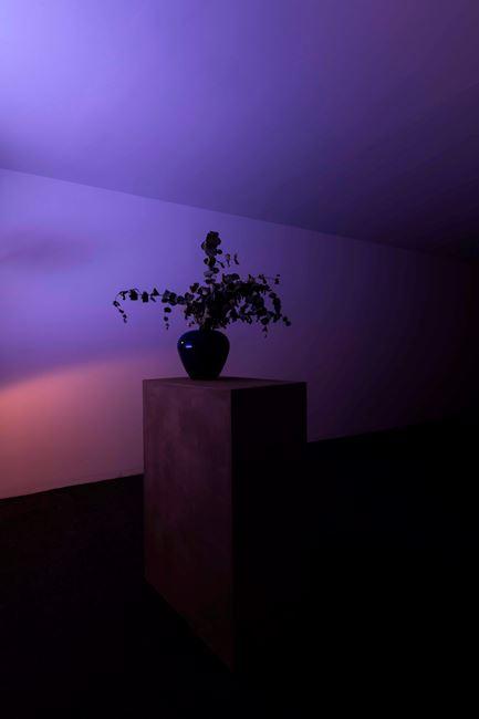 Songs: vase by Pedro Gómez-Egaña contemporary artwork