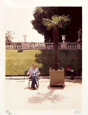 Jean in the Luxembourg Garden by David Hockney contemporary artwork