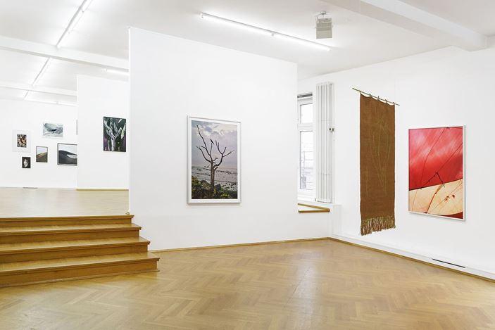 Exhibition view: Flo Maak, Collected Stories,Bernhard Knaus Fine Art, Frankfurt (5 February–30 April 2021).Courtesy Bernhard Knaus Fine Art.