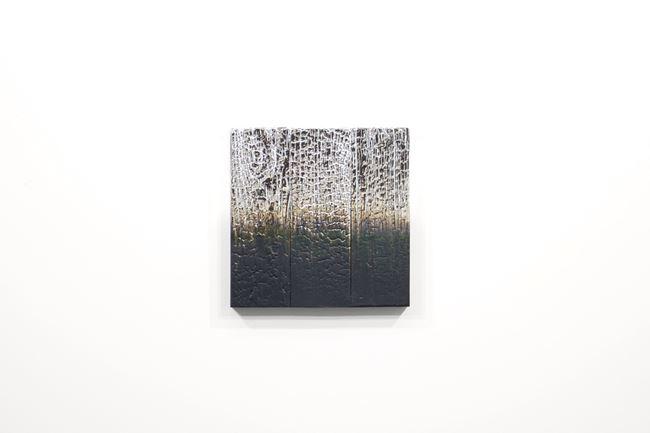 Alchemy (Shou Sugi Ban) 1.20.12.12.4 by Miya Ando contemporary artwork