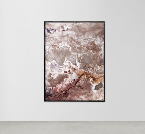 Exhibition view: Brooke Holm,Photographs from the Wild, Informality (22 April–13 May 2021). Courtesy Informality.