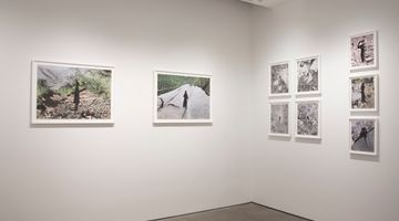 Contemporary art exhibition, Brea Souders, Vistas at Bruce Silverstein, New York