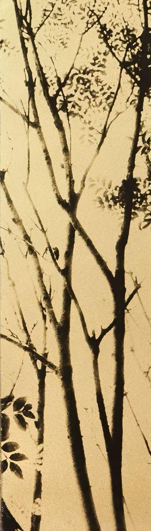Glanage - 27 by Naohiro Ninomiya contemporary artwork photography