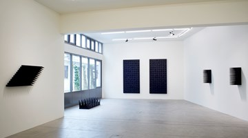 Contemporary art exhibition, Yang Mushi, Compulsory Execution at Galerie Urs Meile, Lucerne, Switzerland