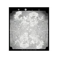 New Order 02 by Yuki Yamazaki contemporary artwork photography