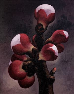 Apricot Flower No.8 by Yan Bing contemporary artwork painting