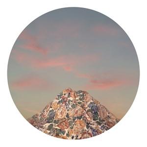 Mountain Blossom 14 by Liu Yue contemporary artwork