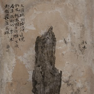 Meng Xi II Decomposing Wood by Wei Bi contemporary artwork