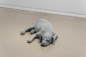 Dog by Hans Op de Beeck contemporary artwork