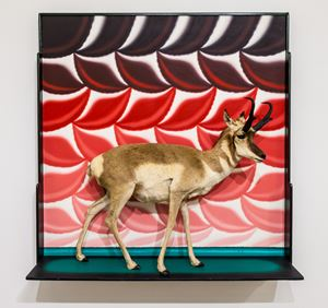 Pronghorn Diorama by Roger Brown contemporary artwork