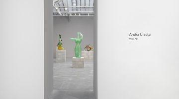 Contemporary art exhibition, Andra Ursuţa, Void Fill at David Zwirner, Paris, France