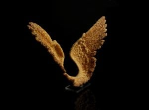 Gold Wings 2 by Suzann Victor contemporary artwork