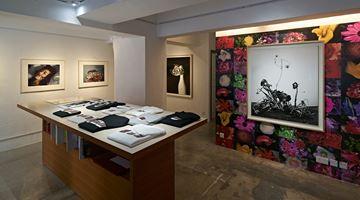 Contemporary art exhibition, Nobuyoshi Araki, Flower Rondeau at SHOP Taka Ishii Gallery, SHOP Taka Ishii Gallery, Hong Kong