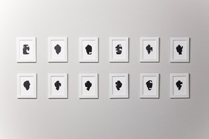 The Shapes Project Shapes From Maine Shape Silhouettes by Allan McCollum contemporary artwork