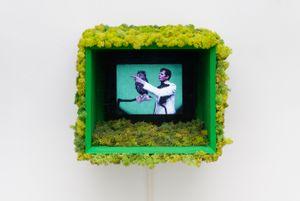 Felix aux pays des merveilles (Hiboux) by Marie Losier contemporary artwork