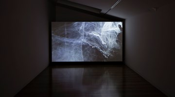 Contemporary art exhibition, Joyce Campbell, Flightdream at Two Rooms, Auckland