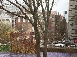Simone Leigh, Wangechi Mutu, Kehinde Wiley, and Vinnie Bagwell In the Running for New Central Park Memorial