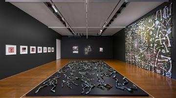 Contemporary art exhibition, Fiona Hall, Afraid Cascade at Roslyn Oxley9 Gallery, Sydney