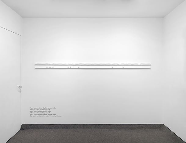 Exhibition view: Amy Stacey Curtis, One Wall One Work: AMY STACEY CURTIS, Krakow Witkin Gallery, Boston (22 June–26 July 2019). Courtesy Krakow Witkin Gallery.