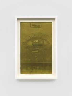 Xerox, Birth by Barbara T. Smith contemporary artwork