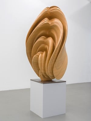 Willow by Tony Cragg contemporary artwork sculpture