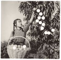 Picking Peaches by Cai Dongdong contemporary artwork photography