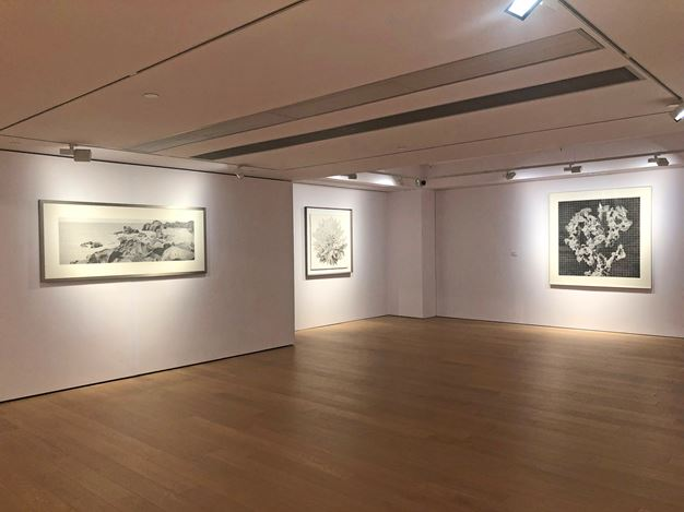 Exhibition view: Lee Chun-yi, Enriching Steles: Ink Art by Lee Chun-yi 豐碑:李君毅的水墨藝術, Alisan Fine Arts, Central, Hong Kong (14 November 2019–9 January 2020). Courtesy Alisan Fine Arts.
