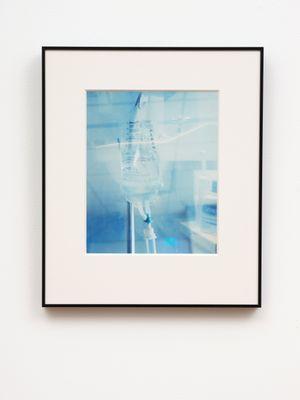 Artery by Meg Porteous contemporary artwork