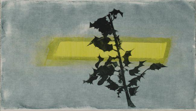 CV 100 by Charlotte Verity contemporary artwork