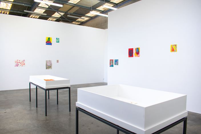 Exhibition view: Brenda Nightingale, Nathan Pohio & Francis Upritchard, 20/20 Rocks, Jonathan Smart Gallery, Christchurch (4 February–7 March 2020). Courtesy Jonathan Smart Gallery.