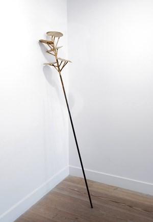 Plants - Tus lunares son estrellas by Giovanni Ozzola contemporary artwork