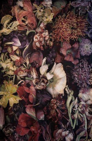 Mil Flores 01 by Luzia Simons contemporary artwork