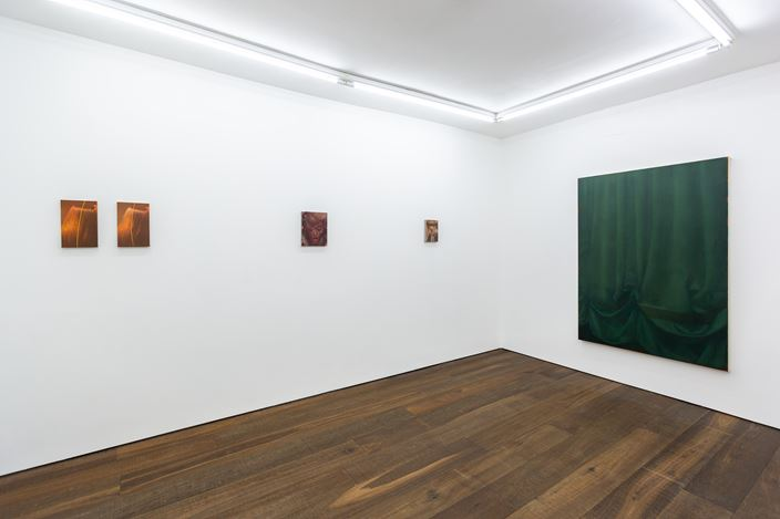 Exhibition view: Louise Giovanelli, in mediās rēs,WORKPLACE, London (30 October–15 January 2020). Courtesy WORKPLACE.