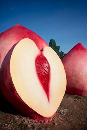 Peach 桃 by Feng Li contemporary artwork