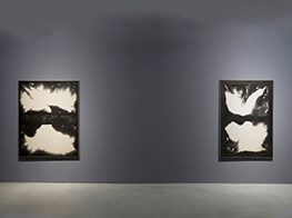 Chung Chang-Sup at Kukje Gallery