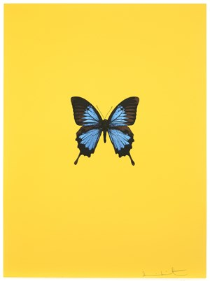 It's a Beautiful Day by Damien Hirst contemporary artwork