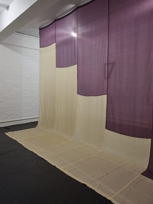 Purple Raincoat (for Vasiliki) by Sriwhana Spong contemporary artwork sculpture