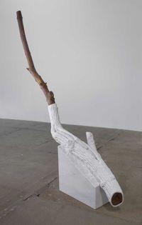 Indistinti confini - Sapina (Indistinct Boundaries -Sapina) by Giuseppe Penone contemporary artwork sculpture