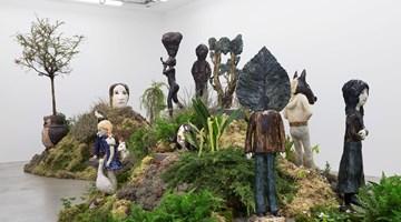 Contemporary art exhibition, Klara Kristalova, Camouflage at Perrotin, Paris, France