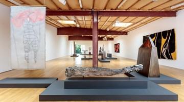 Contemporary art exhibition, Enrico David, Enrico David at Blum & Poe, Los Angeles