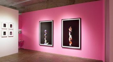 Contemporary art exhibition, Yamamoto Wataru, Desired Forms (2012-2017) at Yumiko Chiba Associates, Tokyo, Japan