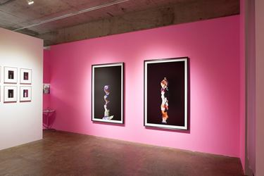 Exhibition view: Yamamoto Wataru,Desired Forms (2012–2017), Yumiko Chiba Associates viewing room shinjuku, Tokyo (22 November–22 December 2018). CourtesyYumiko Chiba Associates.