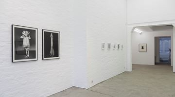 Contemporary art exhibition, Group Exhibition, Works on Paper at Zeno X Gallery, Antwerp
