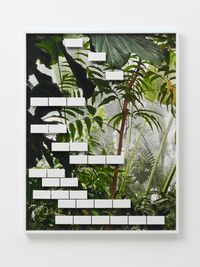 Jungle #08 by Michele Abeles contemporary artwork mixed media