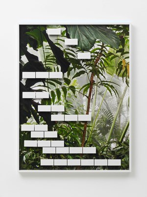 Jungle #08 by Michele Abeles contemporary artwork